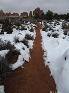 A real trail in Needles District